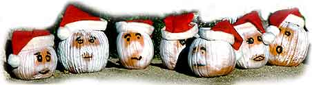 Santa pumpkin.  (c) 1999 Rob Kleine.  All Rights Reserved.